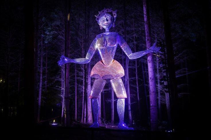 2016 Photo Galleries of The Enchanted Forest Scotland
