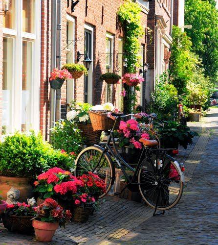 Haarlem Oude Raamstraat