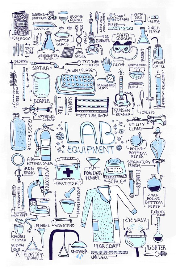 Worksheets Biology Laboratory Equipment 25 best ideas about science equipment on pinterest lab 18 x 24 in poster by rachelignotofsky etsy