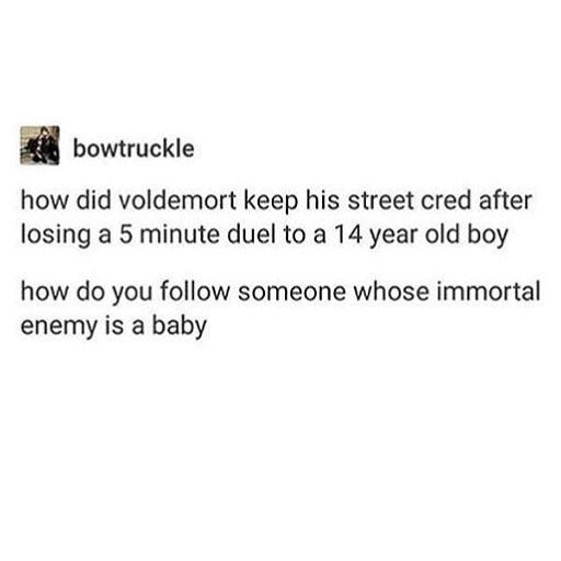 Immortal enemy is a baby  Voldemort Harry Potter