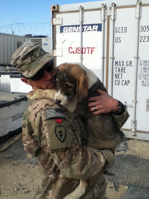 The Puppy Rescue Mission: Humanity and kindness in the face of tragedy and war. http://www.thepuppyrescuemission.org