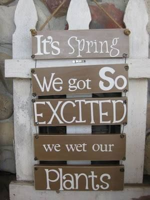 It's spring picture quote to share!  So excited we wet our PLANTS!