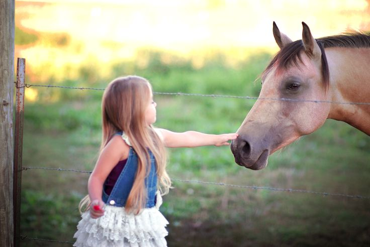 My beautiful daughter Presley at 5 years old in 2015 with her Grandma's horse Jade, a sweet and lovely buckskin.  Photography by:  Theresa R.S. Thurman - redaquadreams