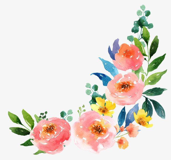 Watercolor Clipart Cartoon Hand Watercolor Pink Flower Botany Decorate Leaf Flowers Clipart Flower Drawing Flower Painting Flower Art