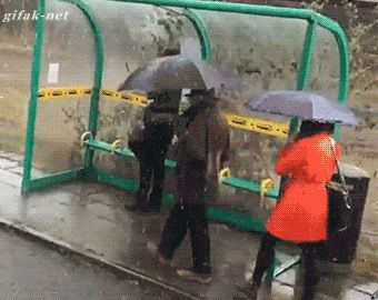 ANIMATED GIF - Just another Monday morning...