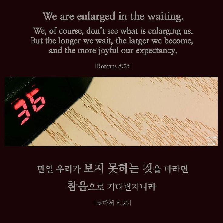We are inlarged in the waiting. . 참음으로 기다립니다. . #성경말씀 #성경구절 #오늘의말씀 #오늘의말씀묵상 #로마서…