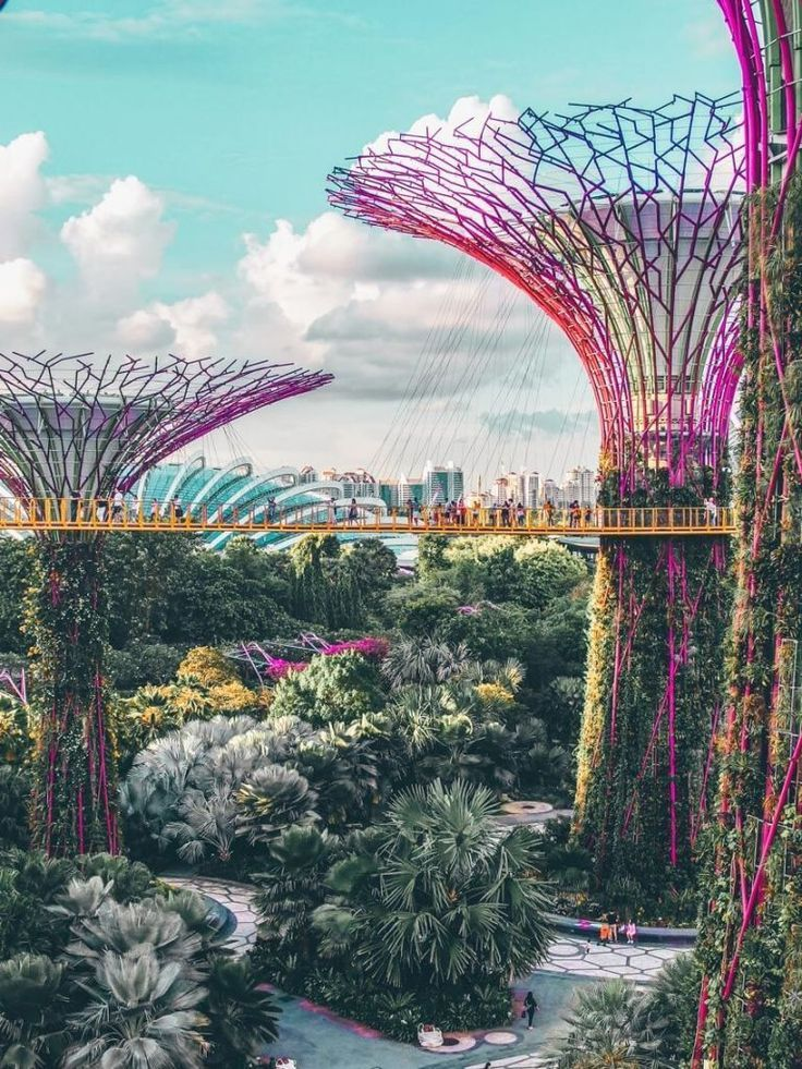What Is So Special About Gardens By The Bay