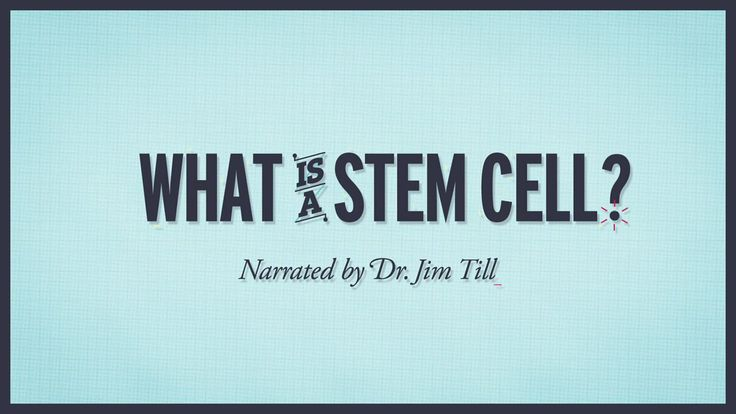 What is a stem cell? Narrated by Dr. Jim Till on Vimeo