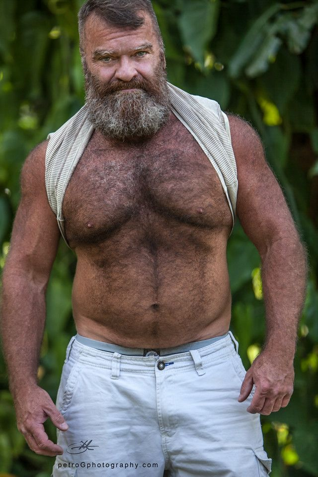 Daddy gay grizzly bear