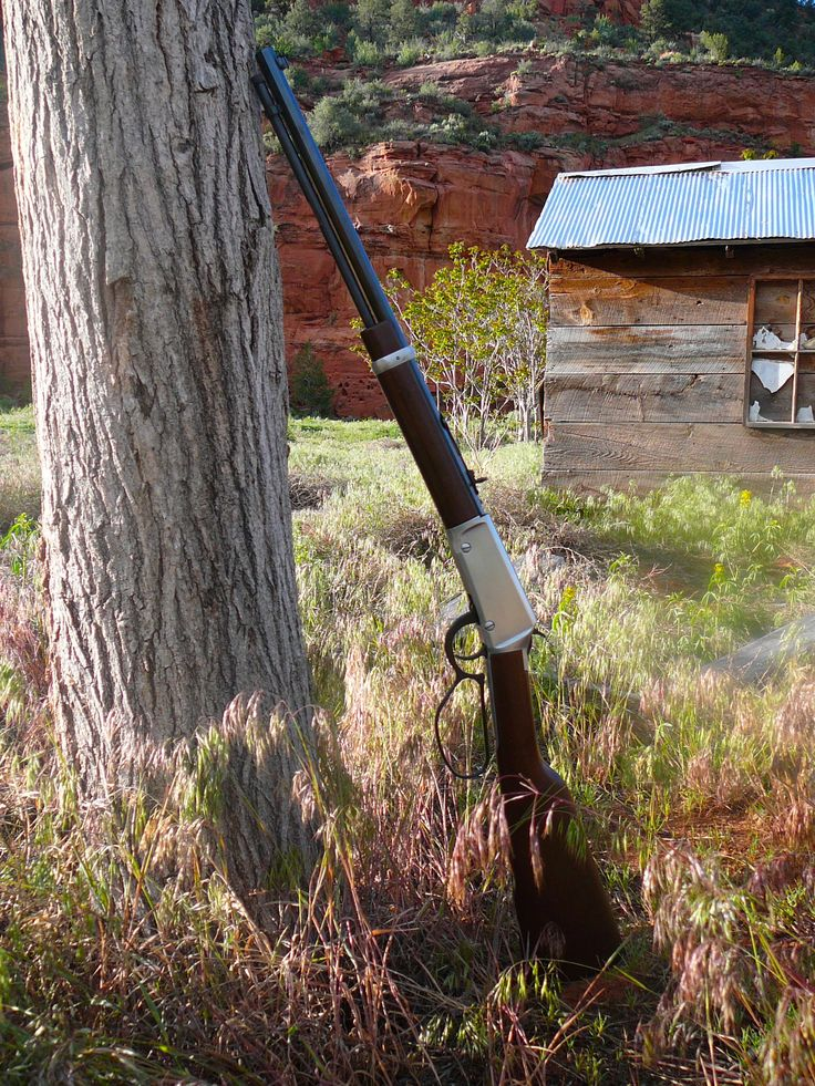 Lever action rifle. Henry repeating arms company makes a great lever action rifle that stands up against Winchester in both look and feel. A great looking silver plated lever action with the large loop lever. Next to an old cabin on the outskirts of Kanab Utah where red rock cliffs surround spring grass.