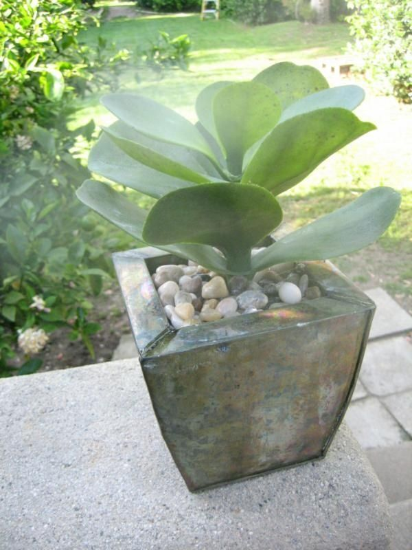 For more information about Plant Terrariums For Sale can visit http://www.hpotter.com/terrariums/
