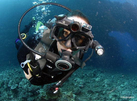 33 best from the media images on pinterest image model - Apex dive gear ...