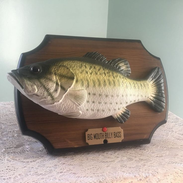 Best 25 novelty gifts ideas on pinterest novelty for Dont worry be happy fish