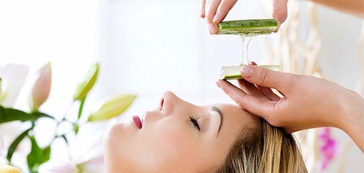 El aloe vera o sábila es una planta milagrosa. Con ella, cuidarás tu piel como nunca antes lo habías hecho. Haz clic para saber más sobre el aloe vera para la cara.