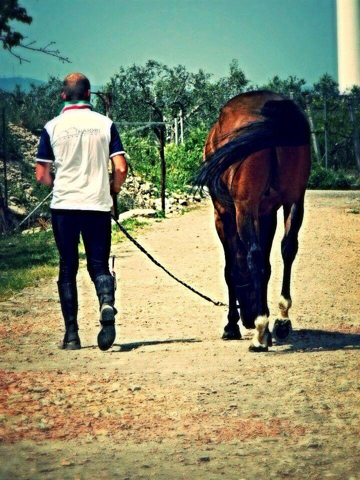Cavallo <3
