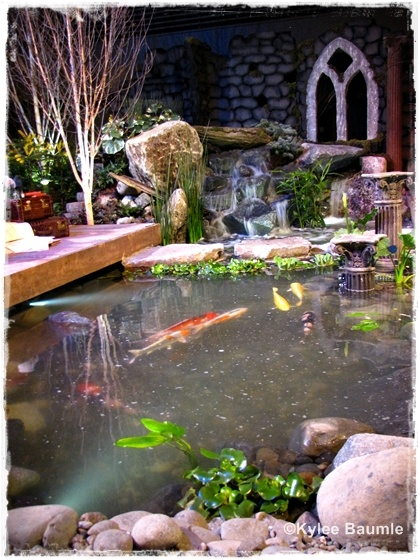 When adding a Koi pond, if you cantilever the deck over the pond you provide shelter from predators, and also a way to dip your feet into the water. Ever had Koi nibble on your toes? By Sue Goetz & The Pond Store.