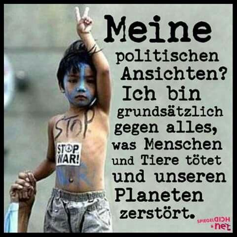 ...Meine politischen Ansichten???.....