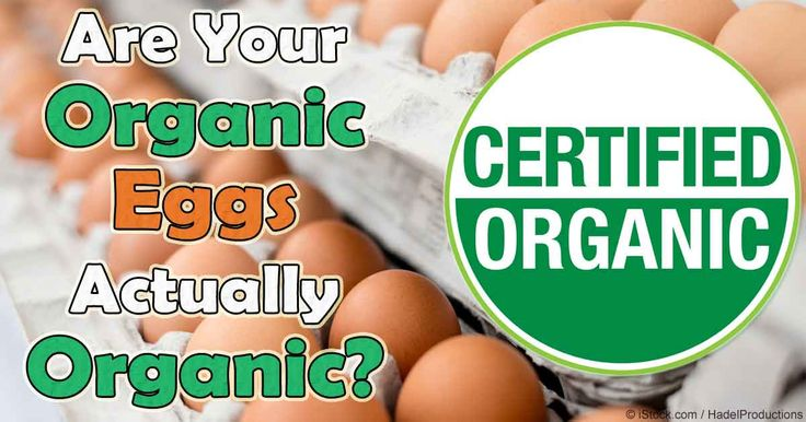 Authentic organic pastured eggs are healthy sources of complete proteins and other nutrients, and are also less likely to carry salmonella. http://articles.mercola.com/sites/articles/archive/2016/01/12/organic-egg-grocery-store-fraud.aspx