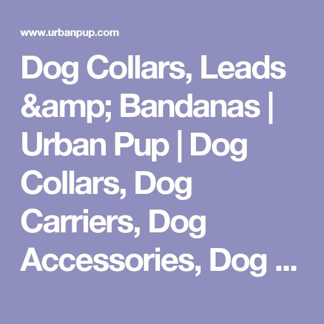 Dog Collars, Leads & Bandanas | Urban Pup | Dog Collars, Dog Carriers, Dog Accessories, Dog Harness