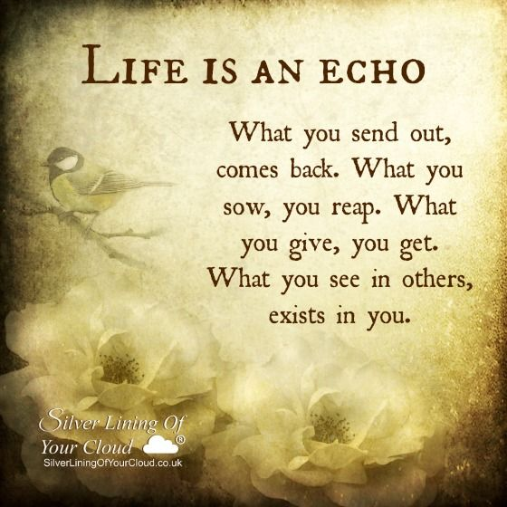 Life is an echo. What you send out, comes back. What you sow, you reap. What you give, you get. What you see in others, exists in you. ~Zig Ziglar ..._More fantastic quotes on: https://www.facebook.com/SilverLiningOfYourCloud _Follow my Quote Blog on: http://silverliningofyourcloud.wordpress.com/ More