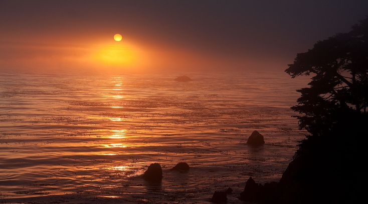 The Confluence of Three Waters at Esalen: Esalen Institute,  55000 Highway One, Big Sur, CA 93920
