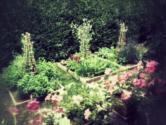 Herb and vegetable garden at Bee Cottage