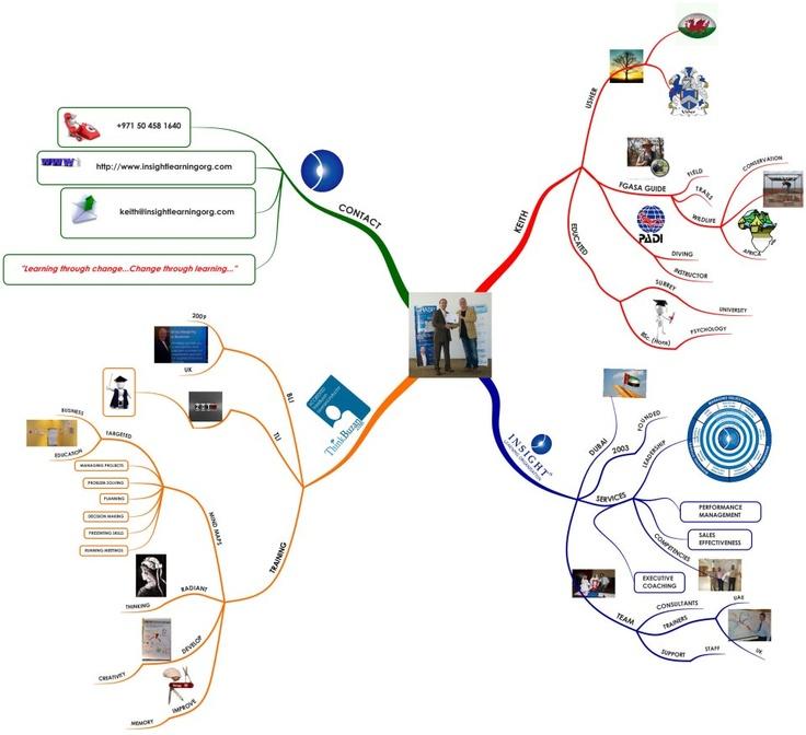 A curriculum vitae expressed as a mind map.