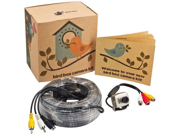 700TVL Wired Bird Box Camera with Audio, Night Vision: Amazon.co.uk: Camera…