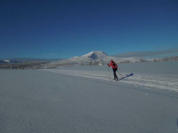 Looking toward Svartfjellet