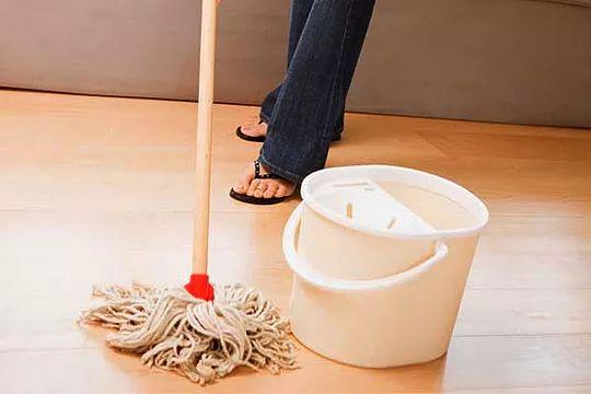 Veneno caseiro para matar baratas|Fonte: Ventilo
