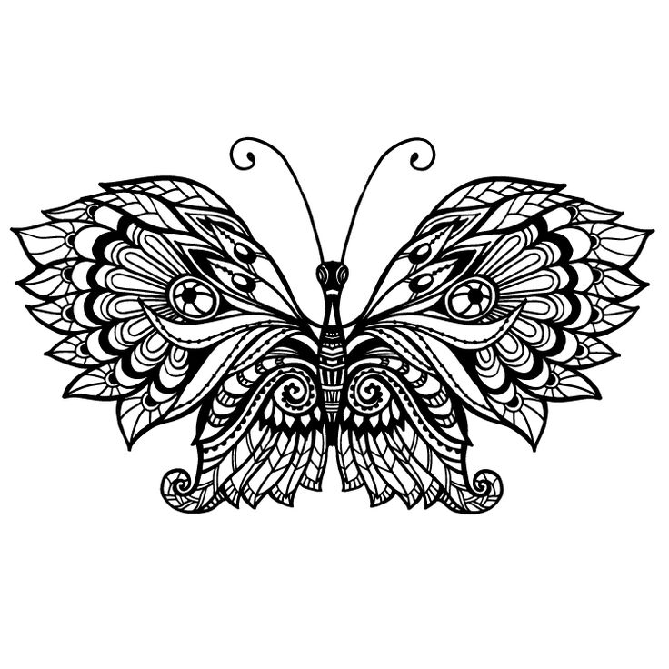 Butterfly Temporary Tattoo #806
