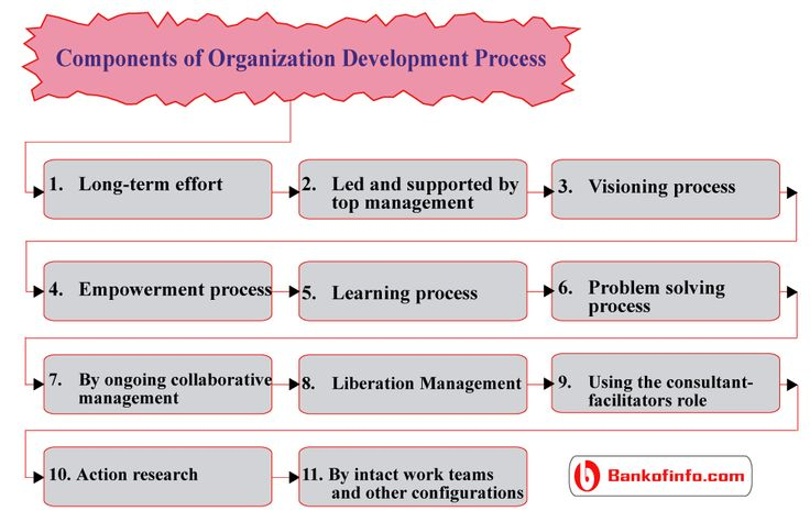 the evolution of organizational behavior as Organizational behavior is the study of both group and individual performance and activity within an organization internal and external perspectives are two theories of how organizational.