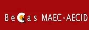 Becas y Ayudas MAEC-AECID: convocatorias de lectorados, becas de cooperación universitaria y Arte