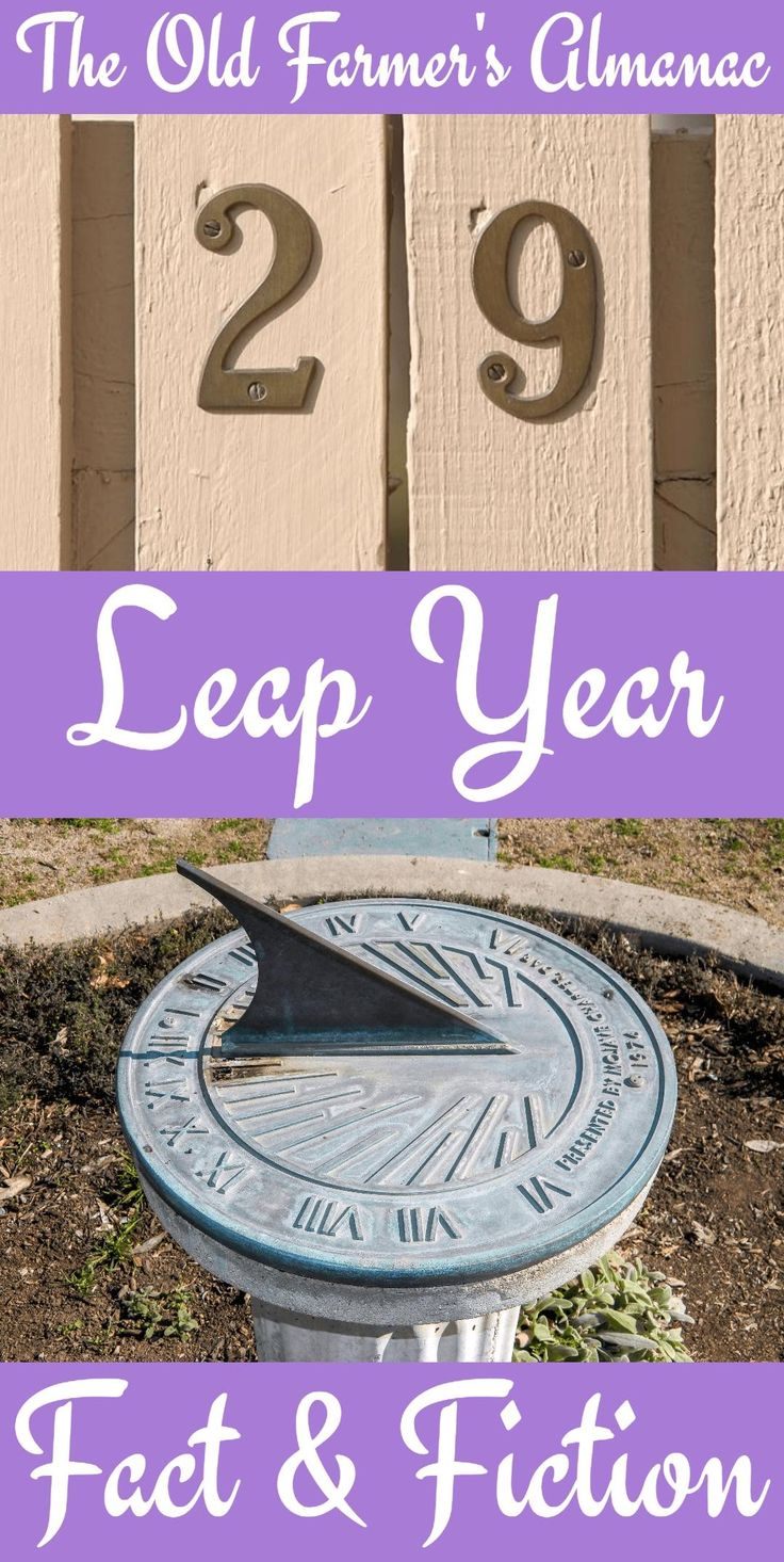 When is the next Leap Year? Learn all about it at Almanac.com.