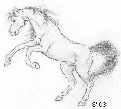 caballos on Pinterest   Dibujo, Pintura and Google