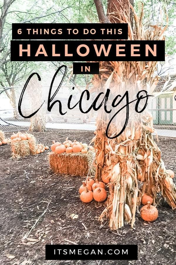 Things To Do In Chicago On Halloween 2020 6 Things to Do This Halloween in Chicago | It's Megan Lifestyle
