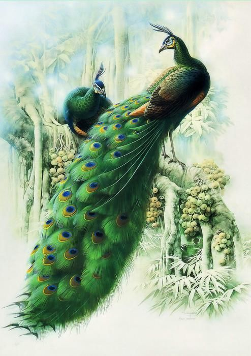 I love the depth and dimension in the feathers on this piece! Amazing detail! #peacock