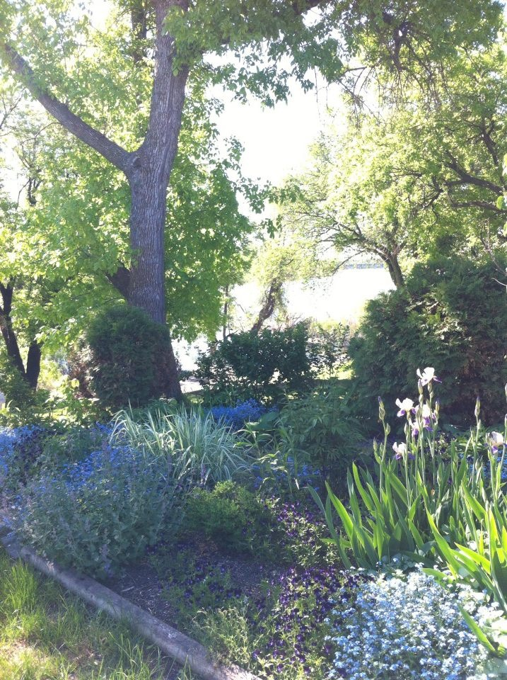 The shady side of the garden...with the River running thru it