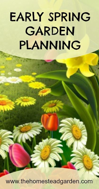 Early Spring Garden Planning