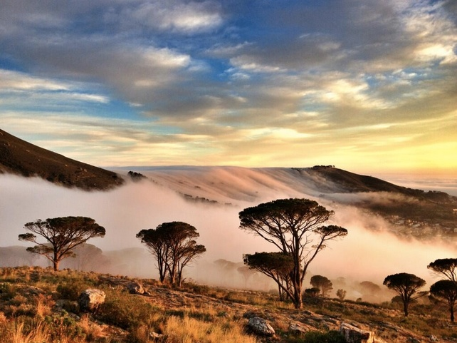 Mist in Cape Town