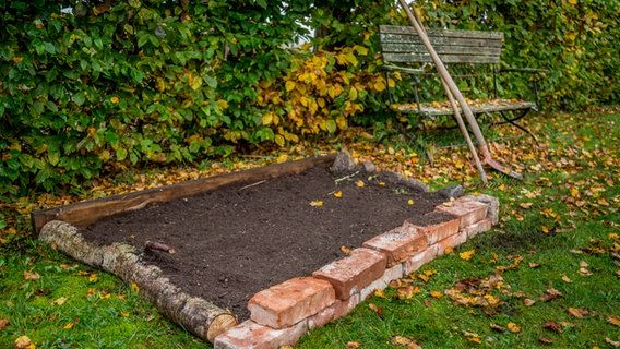 Ein Beet Im Rasen Anlegen Garten Bepflanzen Rasen Anlegen Garten Pflanzen