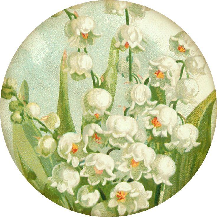 Lilac & Lavender, vintage printables