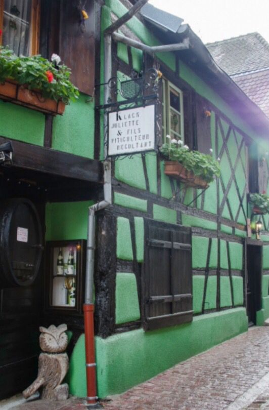 """This fantastic green house is from our feature """"Christmas in Colmar"""""""