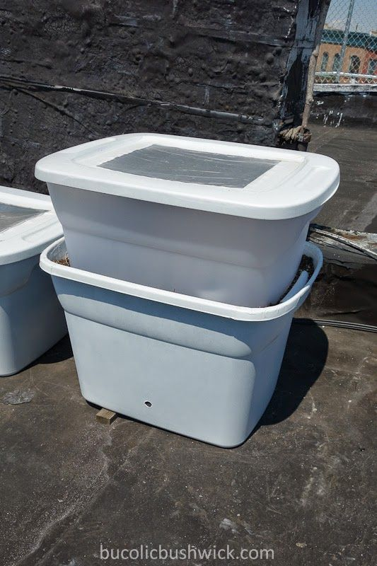 Diy self watering container and greenhouse from 2 storage totes diy garden projects - Diy self watering container garden ...