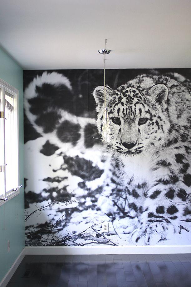 Best 25+ Leopard wallpaper ideas on Pinterest   Leopard print wallpaper, Leopard wall and ...