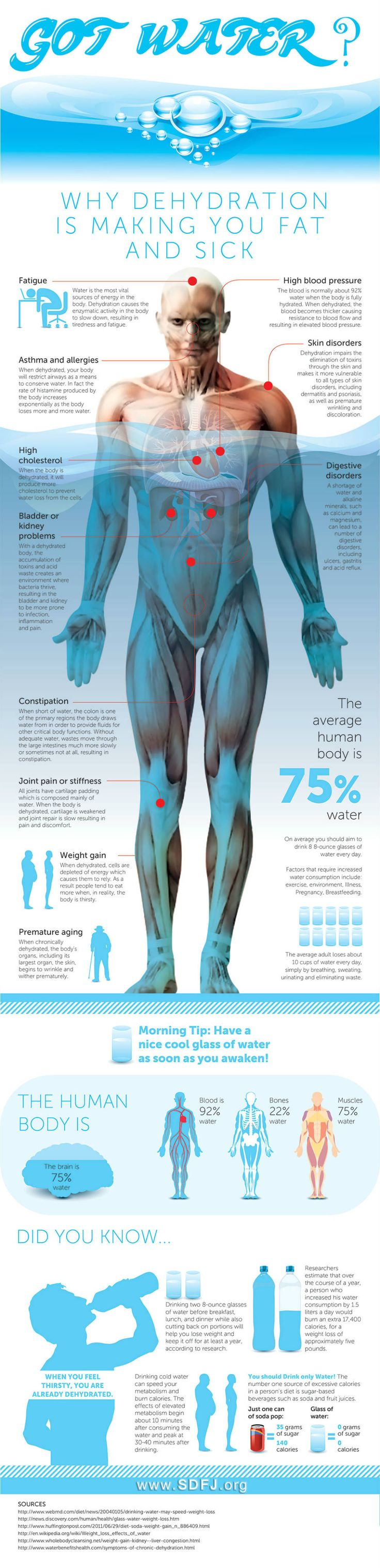 Did you know that 60-75% of the human body consists of water? Only the slightest change in that level can cause #dehydration and problems for human health.  keeping hydrated helps redox signaling molecules function better.