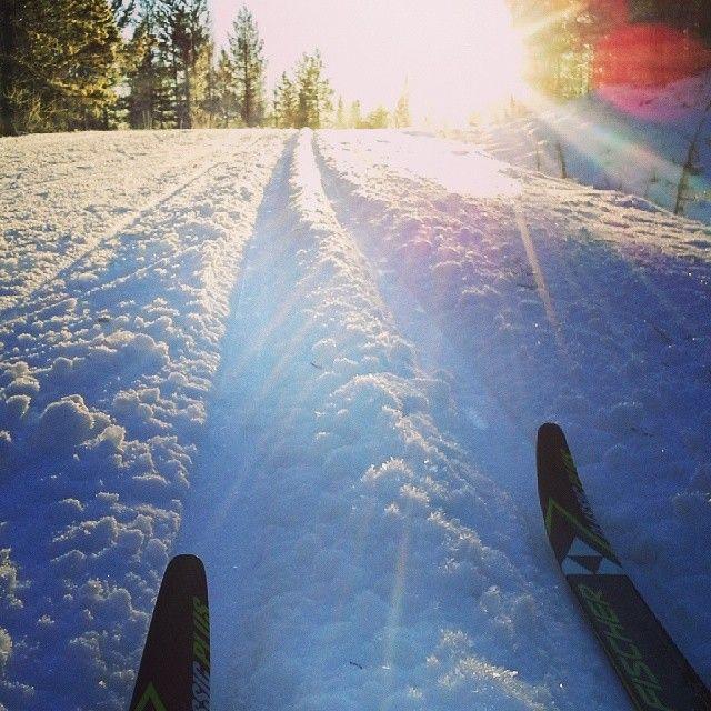 Enjoy great tracks and perfect winter. Sorsele in Swedish Lapland #sorseleskiing