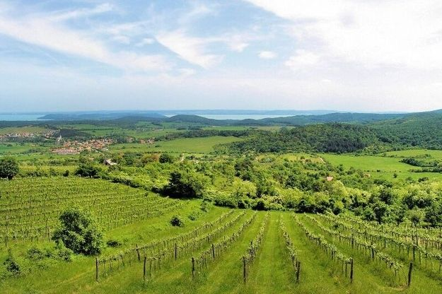 Balaton-felvidék   Community Post: The 17 Most Amazing Places To Visit In Hungary