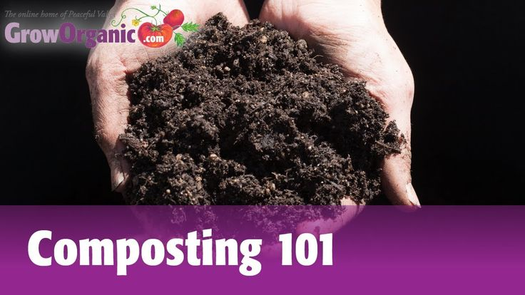 Composting 101 -- Making Compost in Composting Bins and Compost Piles (+...