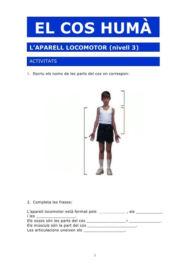 Aparell Locomotor[3]. Exercicis